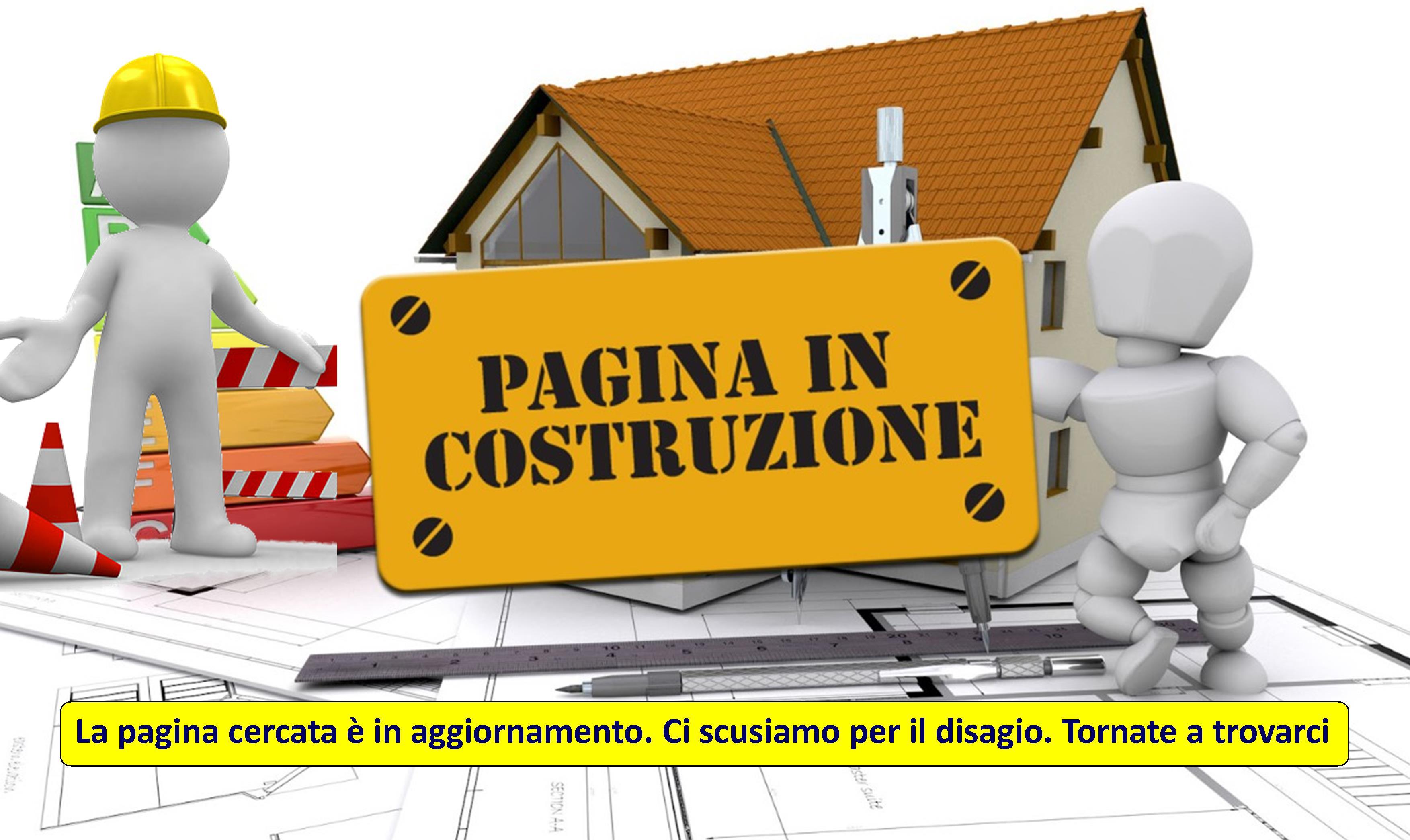 Videosorveglianza-Torino-Pagina-Allestimento